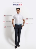 SEM全棉短袖衬衫职业工装衬衫订制